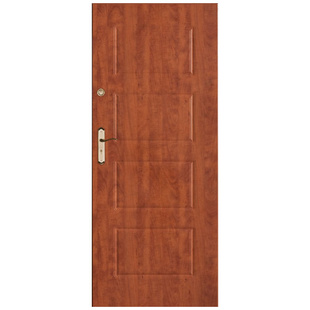 Skrzydło drzwiowe DRE Enter 2