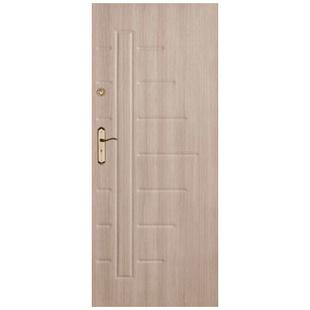 Skrzydło drzwiowe DRE Enter 15