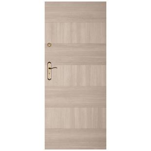 Skrzydło drzwiowe DRE Enter 19